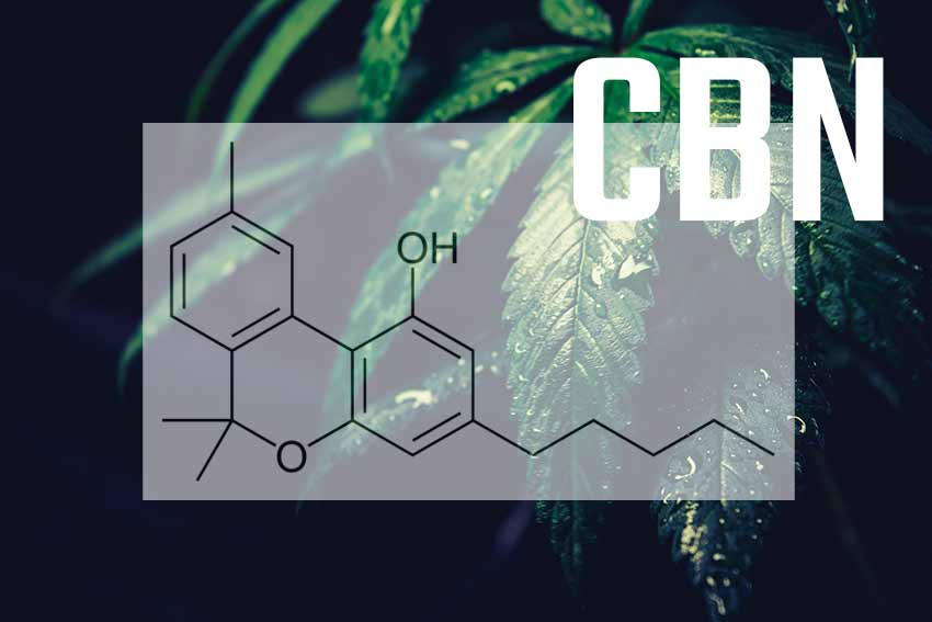 an image of a CBN molecule on top of a hemp leaf background with the letters CBN in white bold